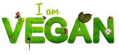 Vegan Diet – Beginning of a Healthy Lifestyle
